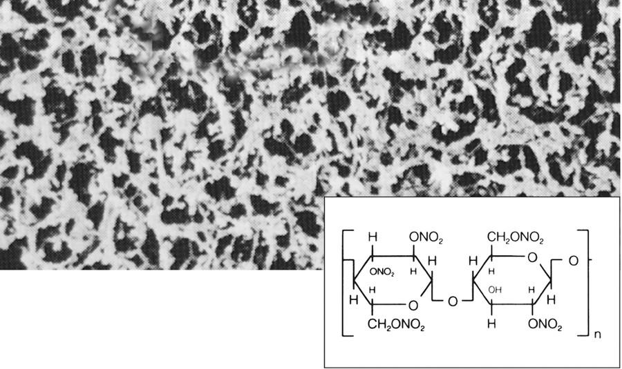 赛多利斯 参考报价: 产品介绍 赛多利斯硝酸纤维素膜的孔结构均匀